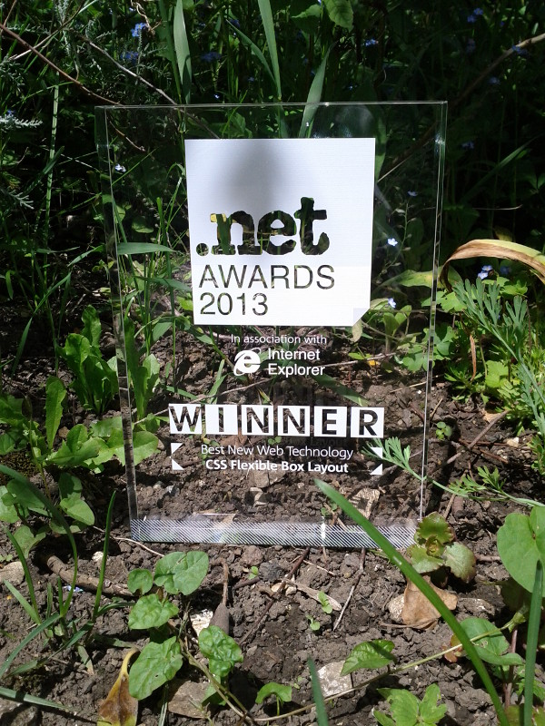 Net Award Best New Web Technology 2013 for CSS Flexible Box Layout Module